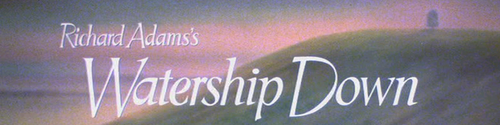 6610/x_094629_wd banner image.png